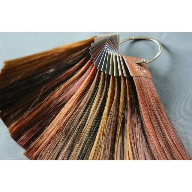 ヘアカラー色見本 16色セット|hair-color|02