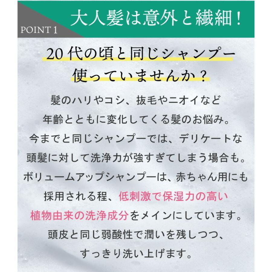 【2点セット】EARTHEART ボリュームアップ シャンプー&ヘアパックセット|hairmake-earth-store|04