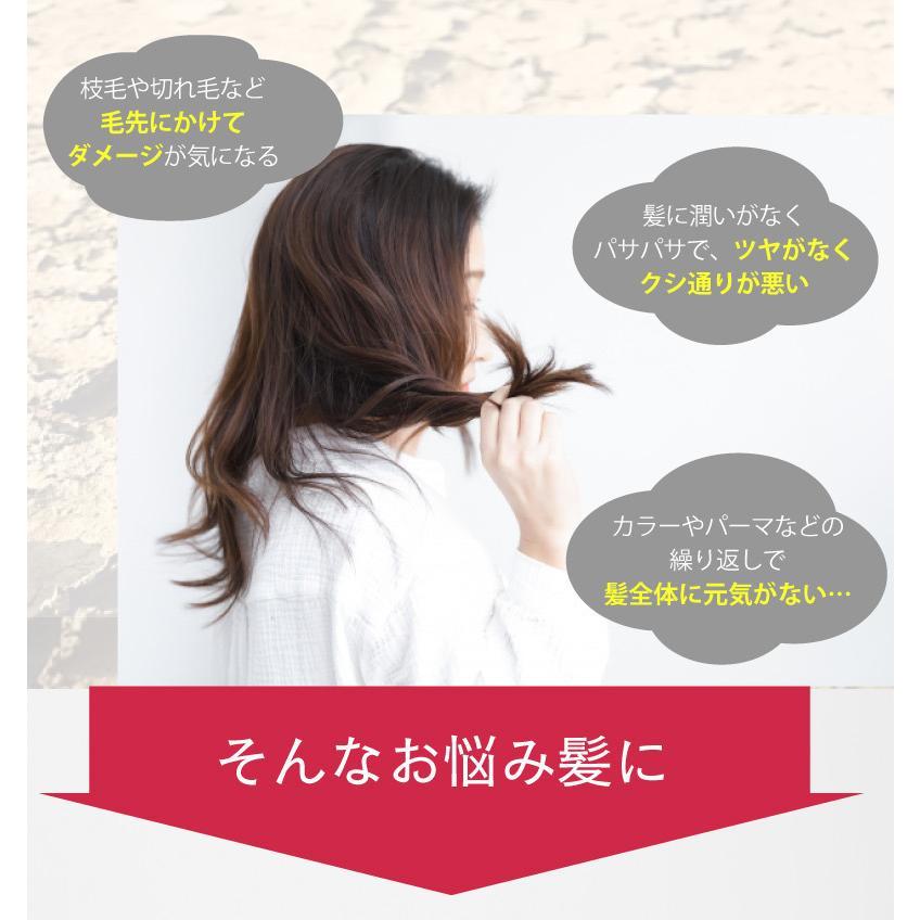 【2点セット】サロン専売品 プロ仕様シルクワンシ シャンプー&ヘアパックセット|hairmake-earth-store|02
