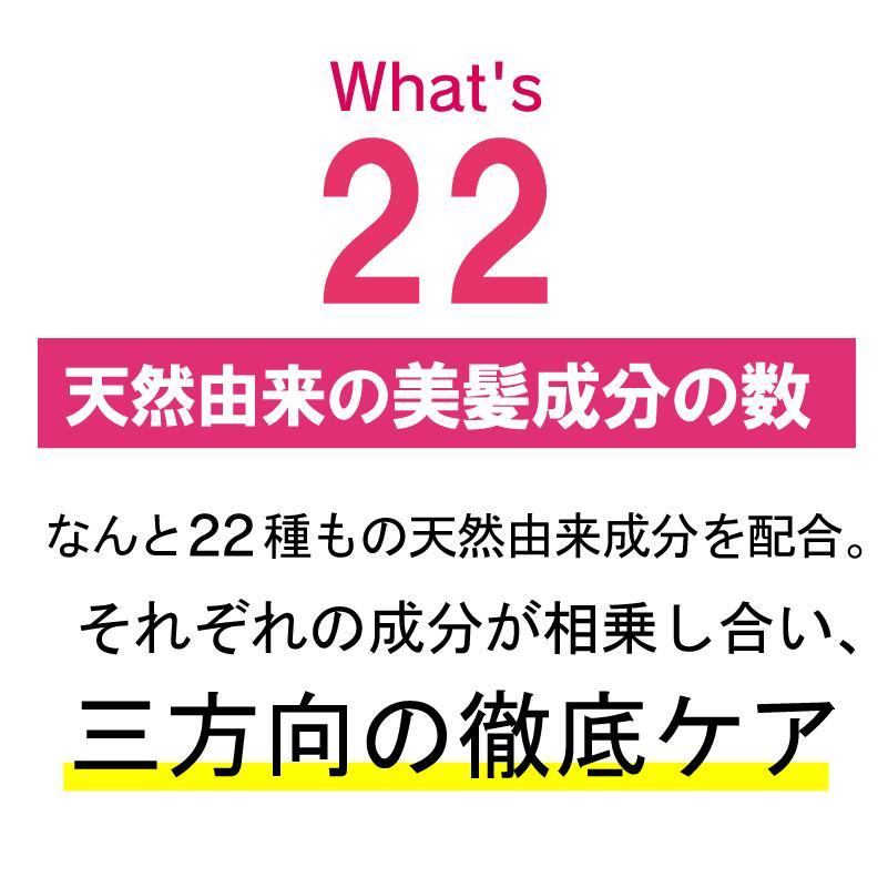 【美容室専売】プロ仕様 22油プラス1 ヘアオイル60ml / 洗い流さないトリートメント  日本製|hairmake-earth-store|08