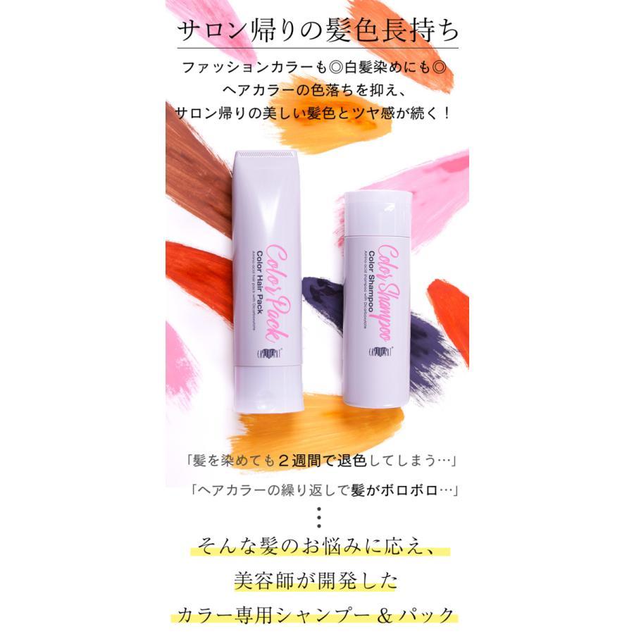 【美容室専売品】2点セット プロ仕様カラー専用シャンプー&ヘアパック セット(各250ml) hairmake-earth-store 02