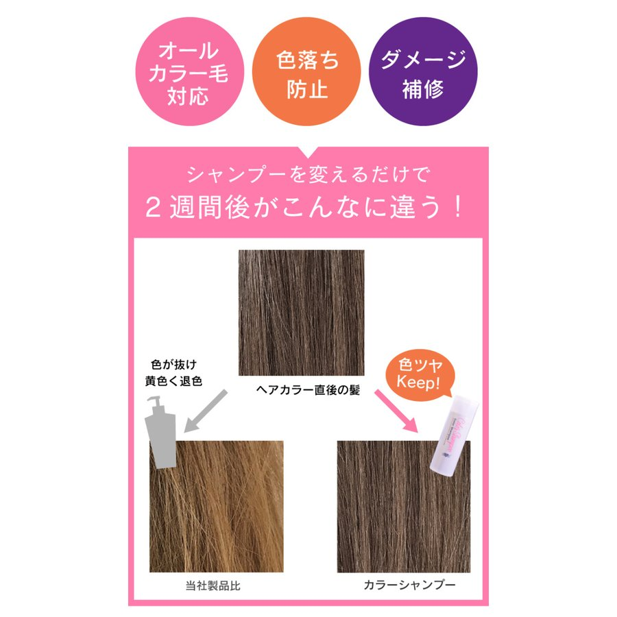 【美容室専売品】2点セット プロ仕様カラー専用シャンプー&ヘアパック セット(各250ml) hairmake-earth-store 03