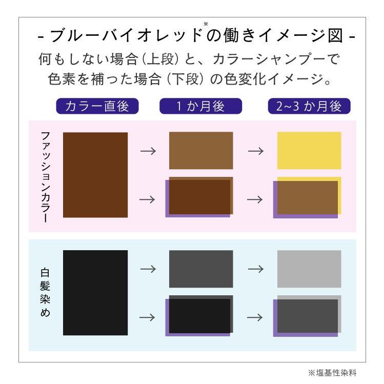 【美容室専売品】2点セット プロ仕様カラー専用シャンプー&ヘアパック セット(各250ml) hairmake-earth-store 07
