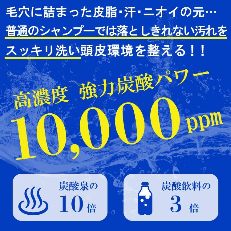 【2点セット】薬用スキャルプシャンプー&トニックセット [医薬部外品] hairmake-earth-store 02