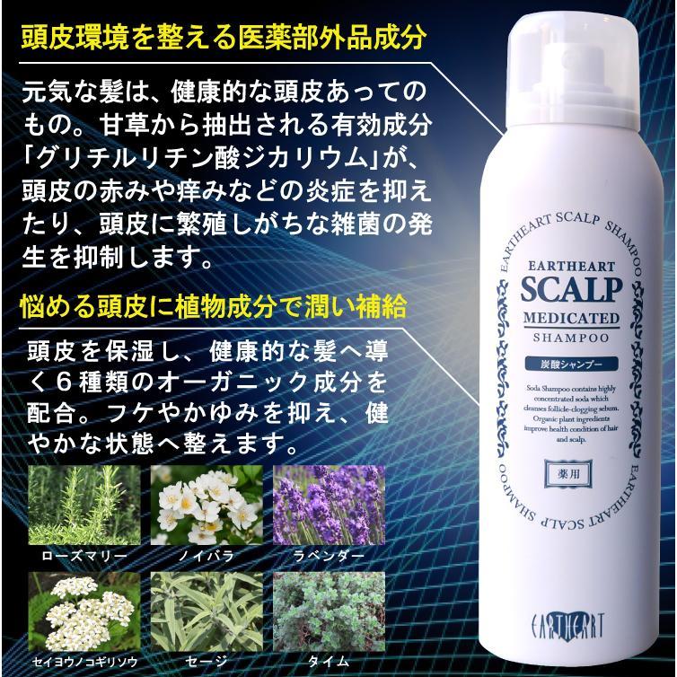 【2点セット】薬用スキャルプシャンプー&トニックセット [医薬部外品] hairmake-earth-store 06