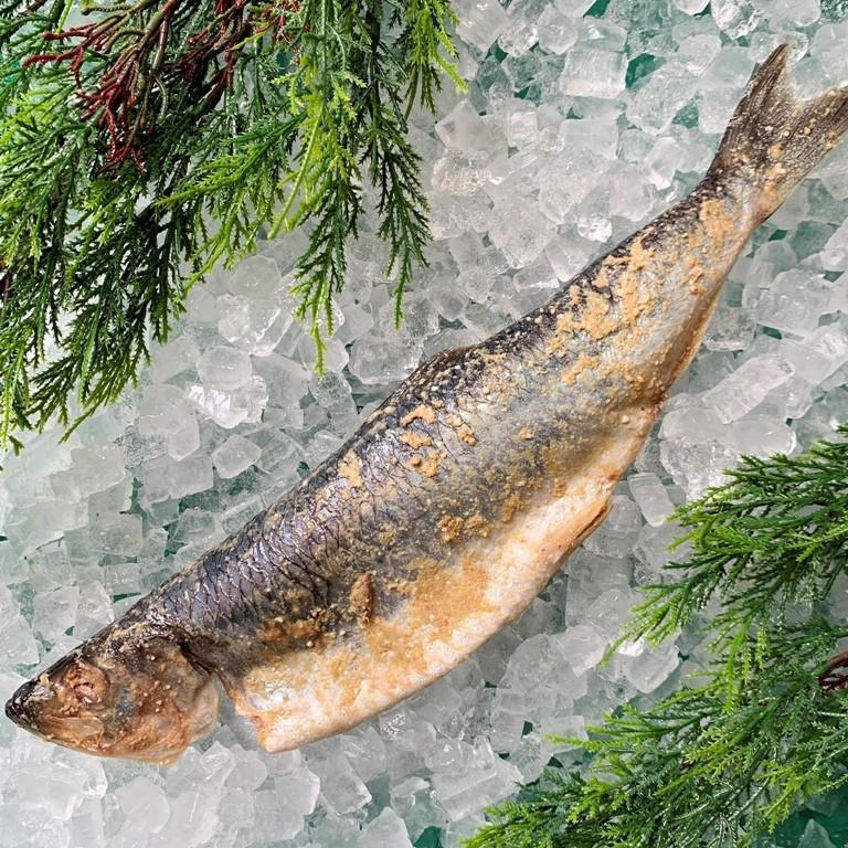 甘塩ぬかにしん ニシン 1尾 糠漬け てら田水産 焼き魚 干物 hakodatemaruyo 02