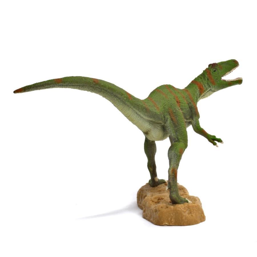 コレクタ/COLLECTA 88857 フクイラプトル 1/40 恐竜フィギュア|hakoniwa|03