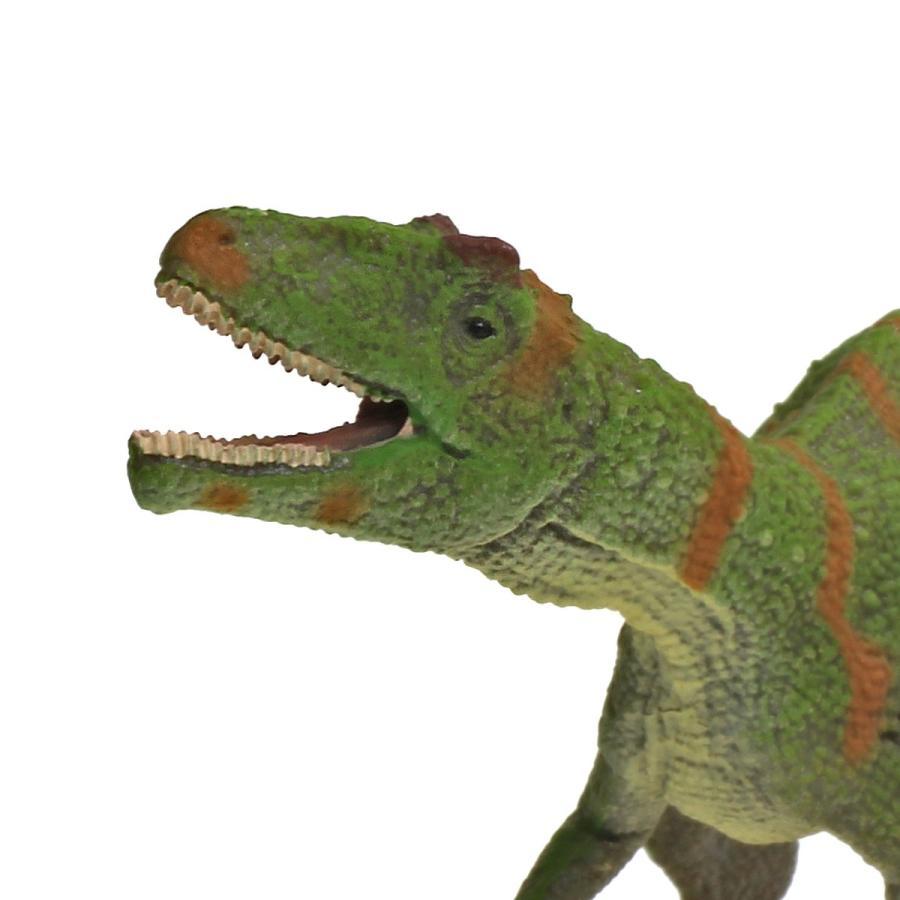 コレクタ/COLLECTA 88857 フクイラプトル 1/40 恐竜フィギュア|hakoniwa|04