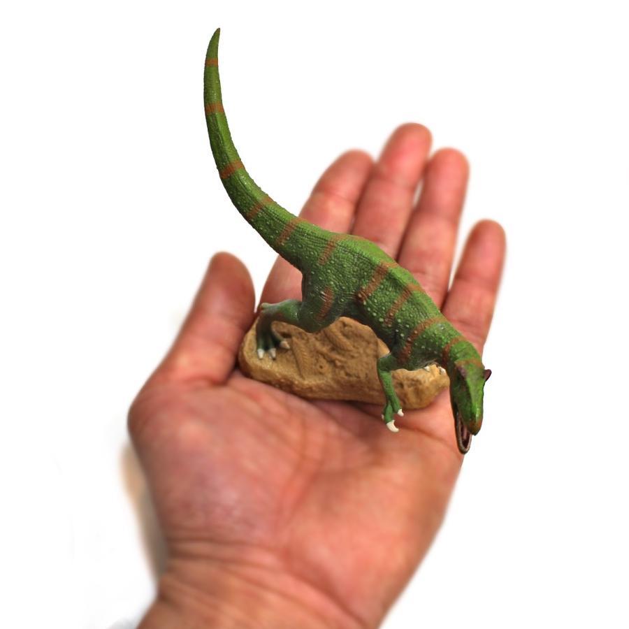 コレクタ/COLLECTA 88857 フクイラプトル 1/40 恐竜フィギュア|hakoniwa|05