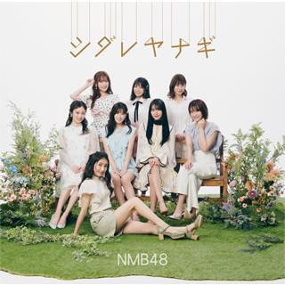 CD)NMB48/シダレヤナギ(Type-B)(DVD付) (YRCS-90193) (特典あり) hakucho