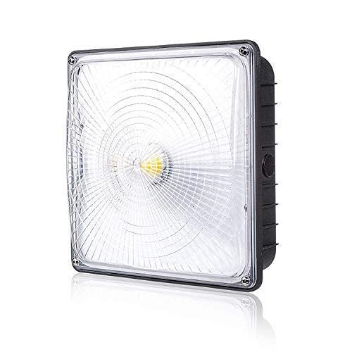 Parmida Parmida LEDキャノピーライト、45W、0-10V調光対応、5200lm、110-277VAC、IP6