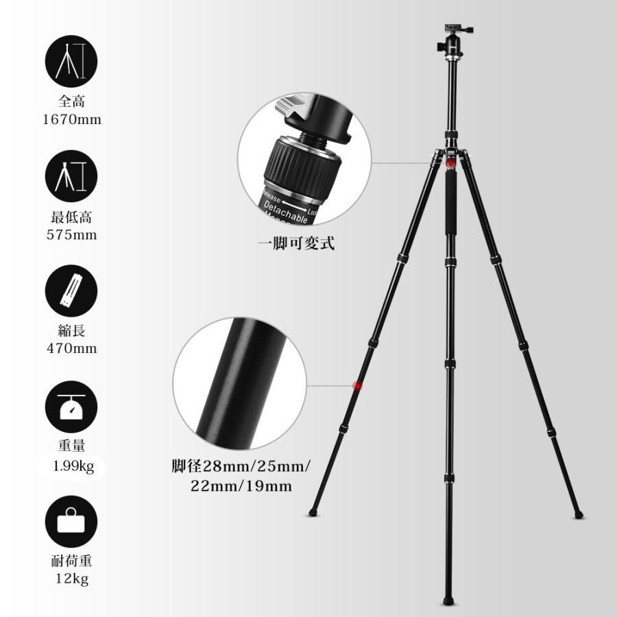 カメラ 三脚 一脚 4段 1670mm 耐荷重12kg コンパクト 自由雲台 アルミ製  パノラマ撮影  デジタルカメラ 一眼レフ Canon Nikon Petax Sonyなど用 TYCKA TK103 halhal 06