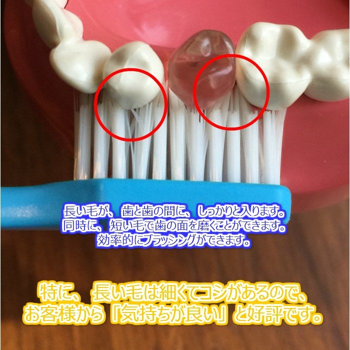 tepe 歯ブラシ スプリーム 10本 hamigakilife 03