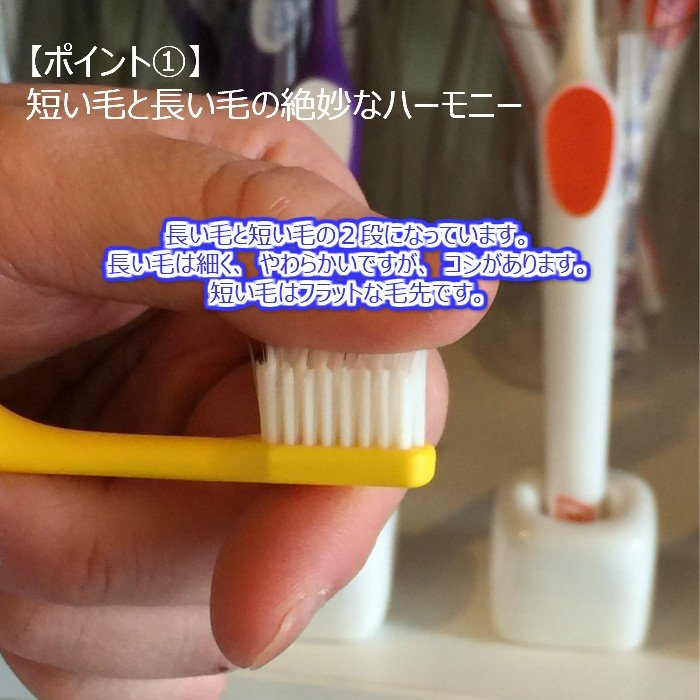 tepe 歯ブラシ スプリームコンパクト 5本|hamigakilife|02