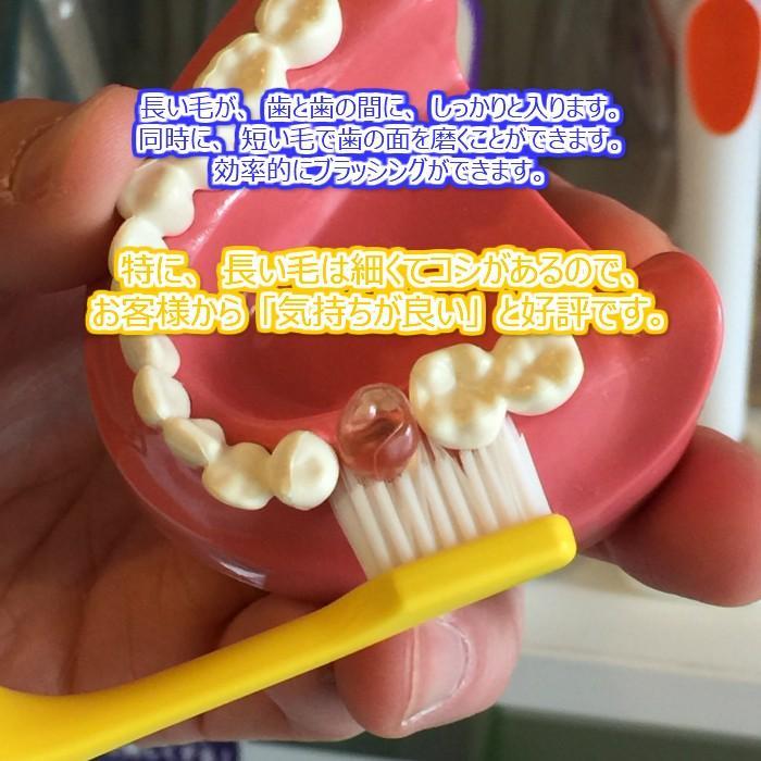 tepe 歯ブラシ スプリームコンパクト 10本|hamigakilife|03