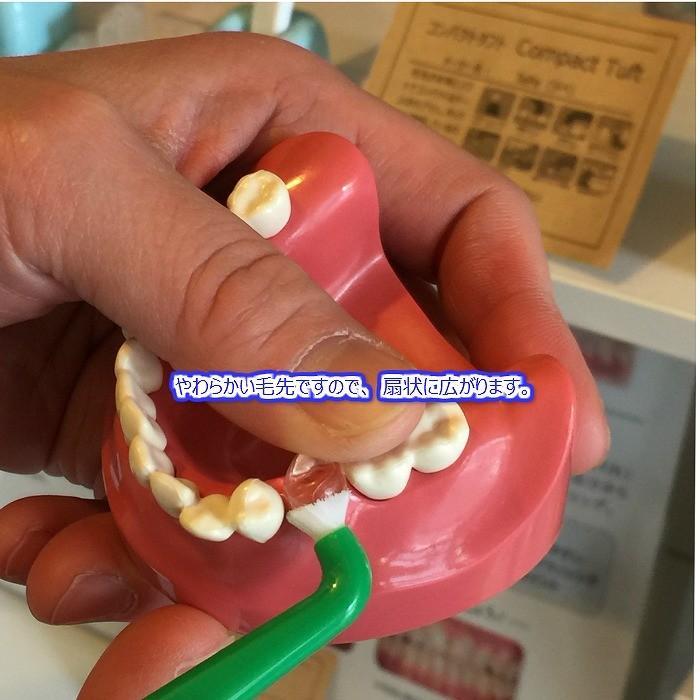 tepe 歯ブラシ コンパクトタフト 5本 hamigakilife 03