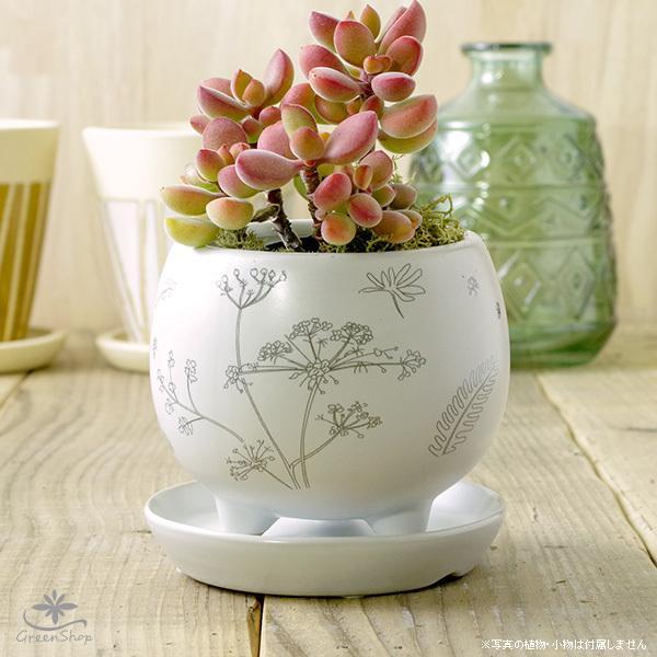 プランター セットアップ おしゃれ 植木鉢 買物 植物柄のまあるい足つきプランター 受け皿付 3号