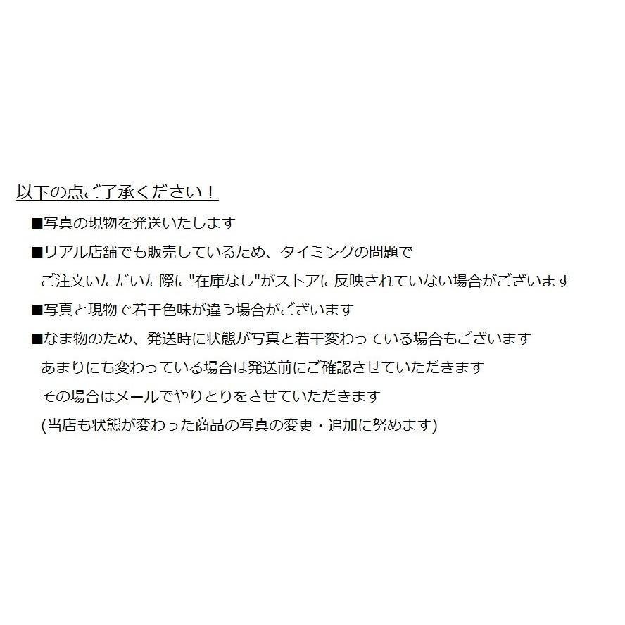 サボテン 満月 綴化 サボテン マミラリアルイ サボテン 多肉植物 hanabisou 06