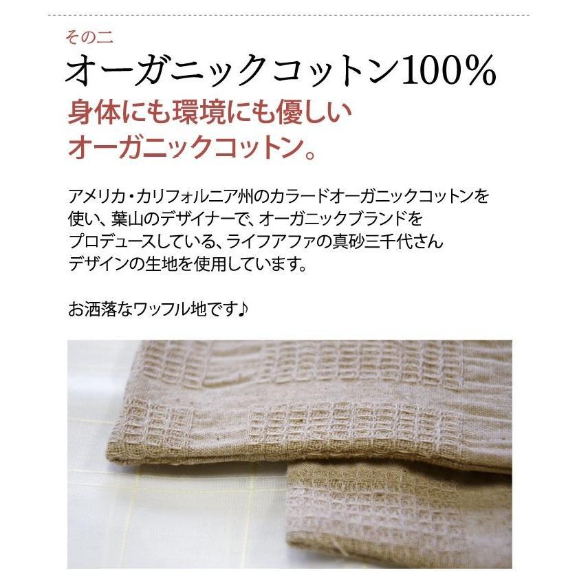夏の福袋2021 ムレ・かぶれに 華布のオーガニックコットンの布ナプキン ホルダー おりものライナー全10枚 色柄お任せ  数量限定 日本製 シルク 草木染め|hanafu|05
