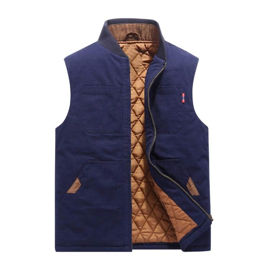 メンズアウトドアスタンドカラーのフリースジャケットベストカジュアルパッド入りベストコート (Color : 青 サイズ : M)