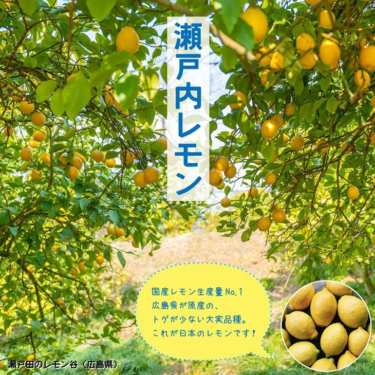 超人気 専門店 レモン 苗木 お気に入り 瀬戸内レモン 1年生 接ぎ木苗