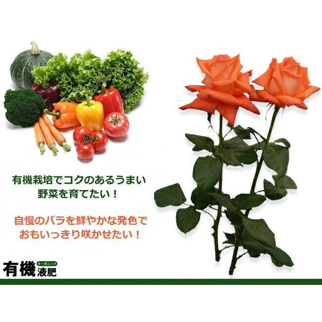 有機液肥オーガニック550ml 有機質肥料|hanahirobaonline|03