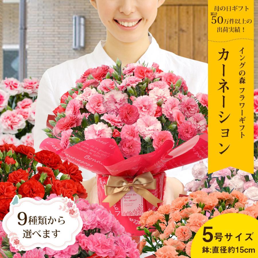 母の日 2021 お花 カーネーション プレゼント 鉢植え ギフト present gift こだわりラッピング|hanamankai