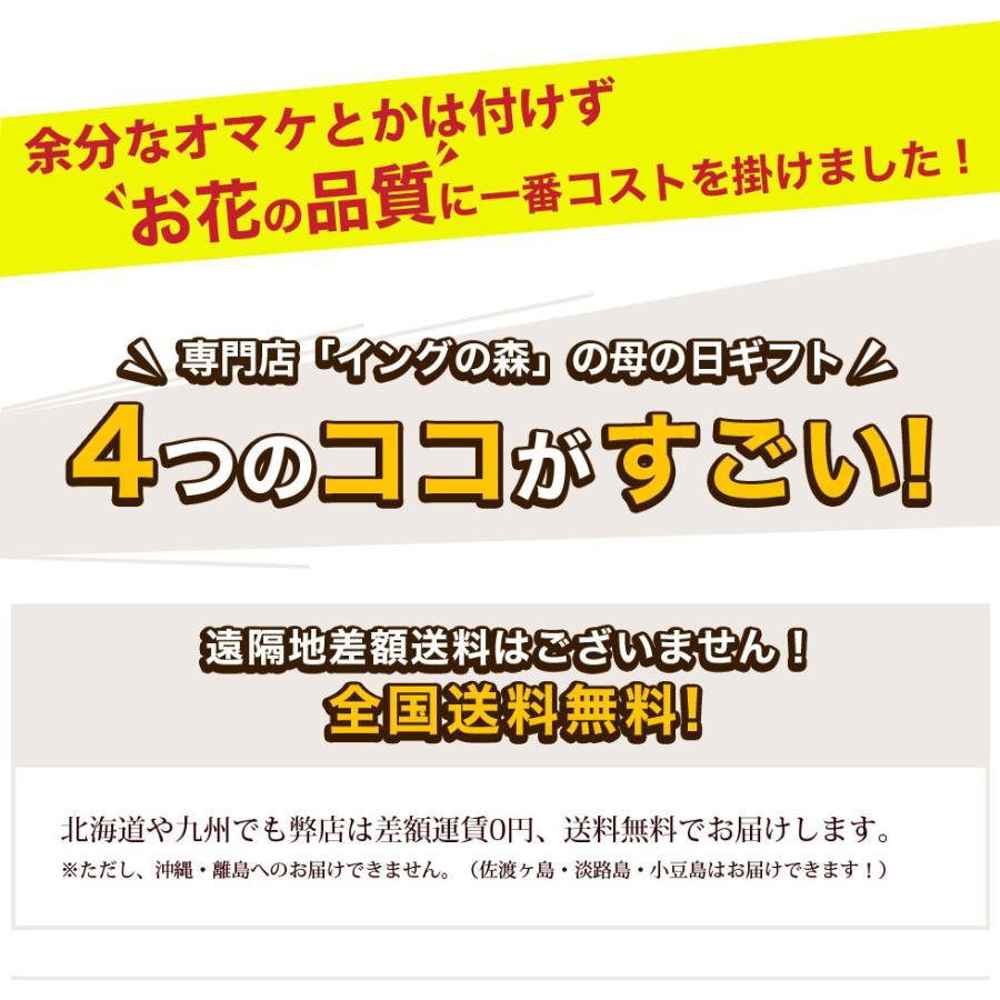 母の日 2021 お花 カーネーション プレゼント 鉢植え ギフト present gift こだわりラッピング|hanamankai|02
