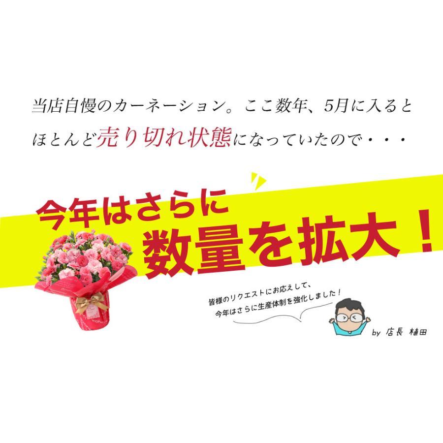 母の日 2021 お花 カーネーション プレゼント 鉢植え ギフト present gift こだわりラッピング|hanamankai|04