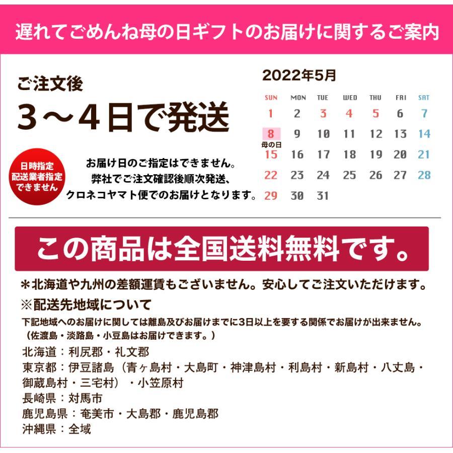 母の日カーネーション6号 鉢植え 花 2021 ギフト プレゼント 大きい おしゃれ プレミアム gift present 選べる7種類|hanamankai|14
