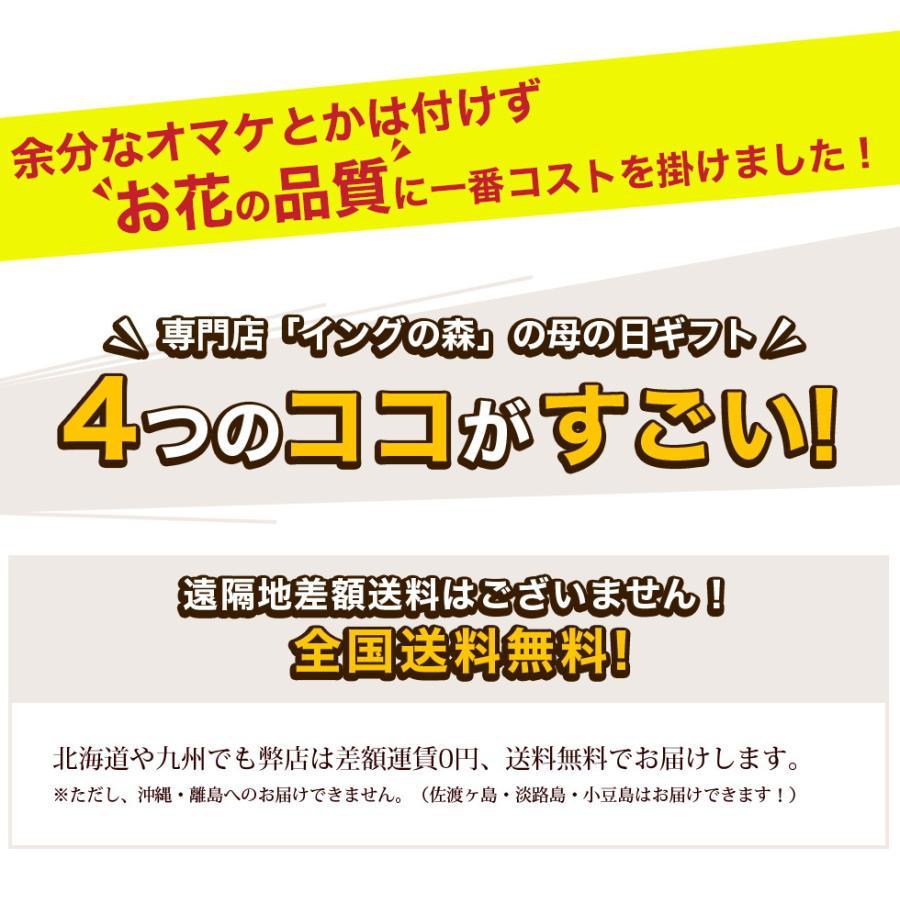 母の日 花 2021 鉢植え プレゼント present ギフト 人気の選べるお花マーガレット ジャスミン ラベンダー クチナシ等|hanamankai|02