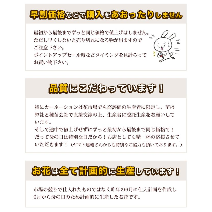 母の日 花 2021 鉢植え プレゼント present ギフト 人気の選べるお花マーガレット ジャスミン ラベンダー クチナシ等|hanamankai|03
