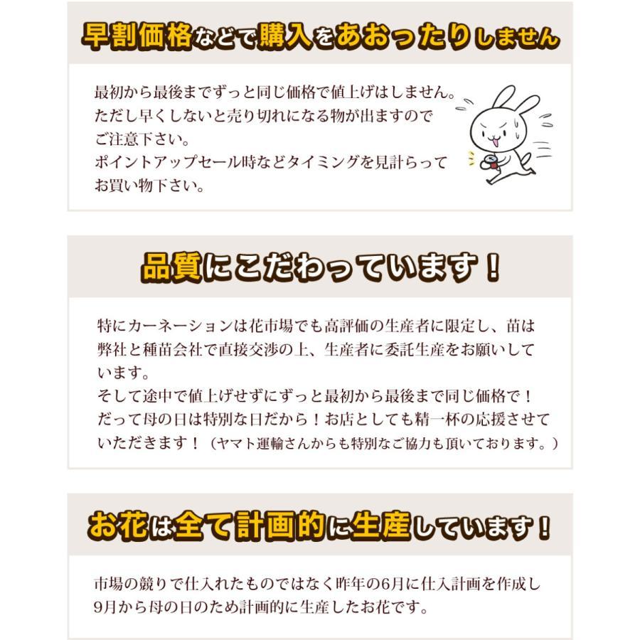 母の日 2021 花 プレゼント present 鉢植え ギフト カーネーション マンデビラ gift こだわりラッピング|hanamankai|03