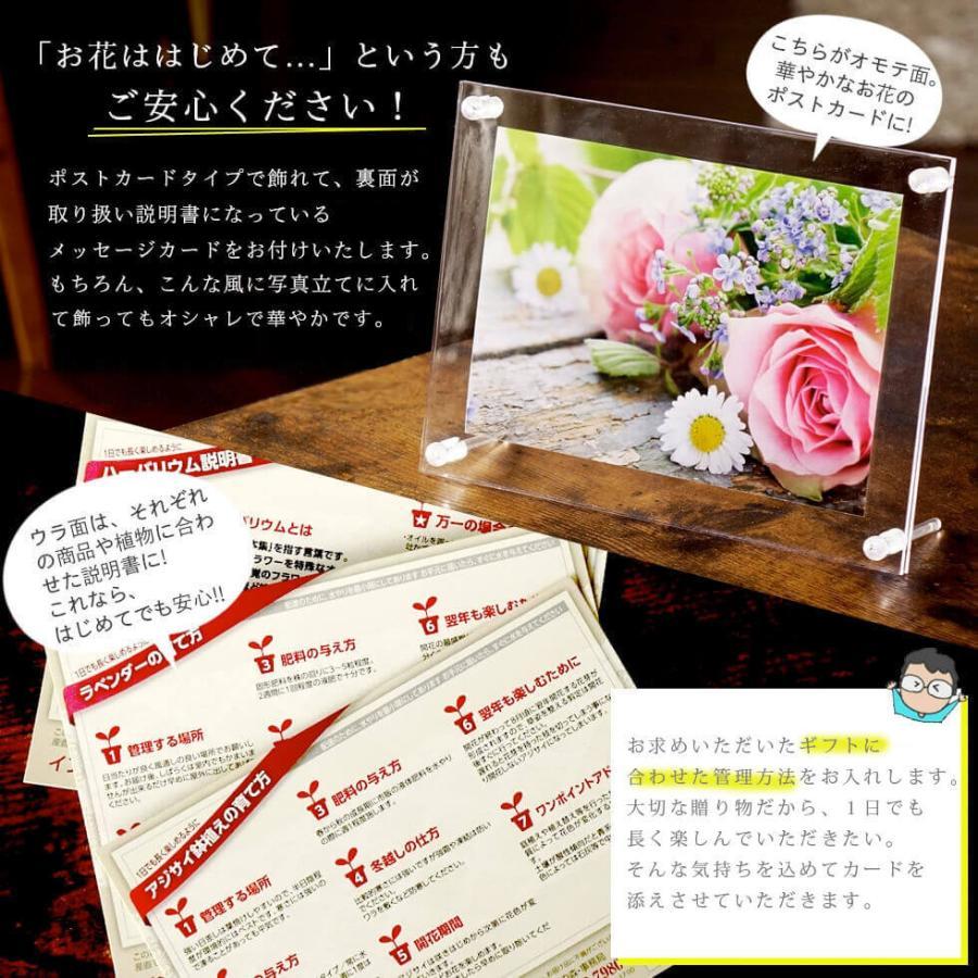 母の日 花とスイーツ 2021 プレゼント お菓子とソープフラワーのセット ギフト  3種から選べる|hanamankai|07