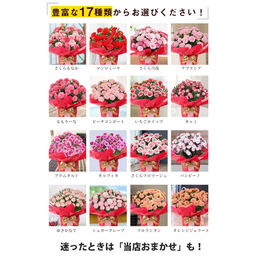 母の日 2021 花とスイーツセット sweets 鉢植え ギフト プレゼント カーネーション5号 gift 選べる花17種&お菓子4種|hanamankai|02