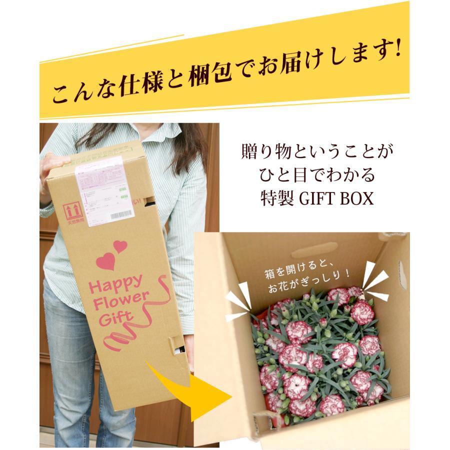 母の日 2021 花とスイーツセット sweets 鉢植え ギフト プレゼント カーネーション5号 gift 選べる花17種&お菓子4種|hanamankai|06