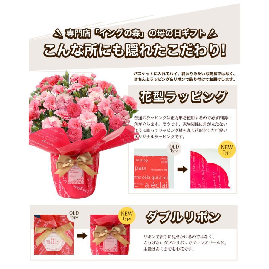 母の日 2021 花とスイーツセット sweets 鉢植え ギフト プレゼント カーネーション5号 gift 選べる花17種&お菓子4種|hanamankai|07