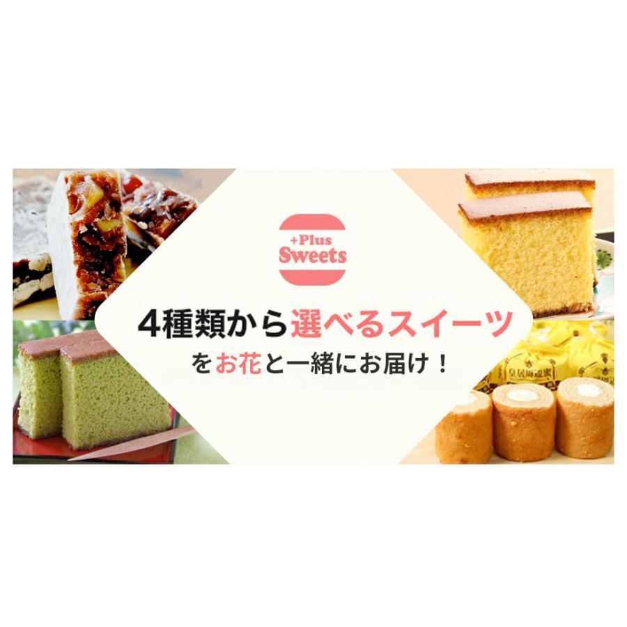 母の日 2021 花とスイーツセット sweets 鉢植え ギフト プレゼント カーネーション5号 gift 選べる花17種&お菓子4種|hanamankai|09
