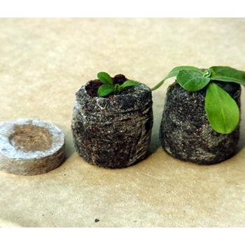 土ポット ジフィーセブン 在庫処分 プロ用 種の発芽はこれで安心 第4種または一般郵便発送可能 20個 ただし2セットまで 培養土 限定モデル
