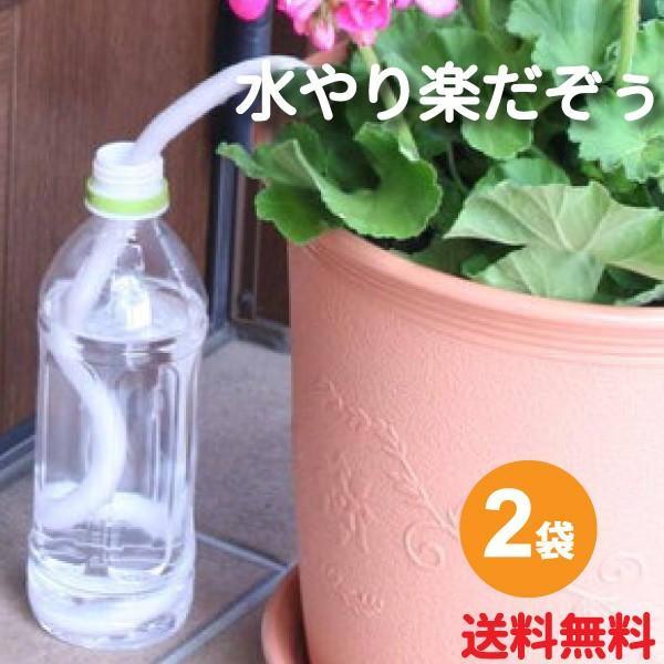 水やり楽だぞぅ 5%OFF キャンペーンもお見逃しなく 4本入り 2袋セット 給水 自動潅水 メール便送料無料