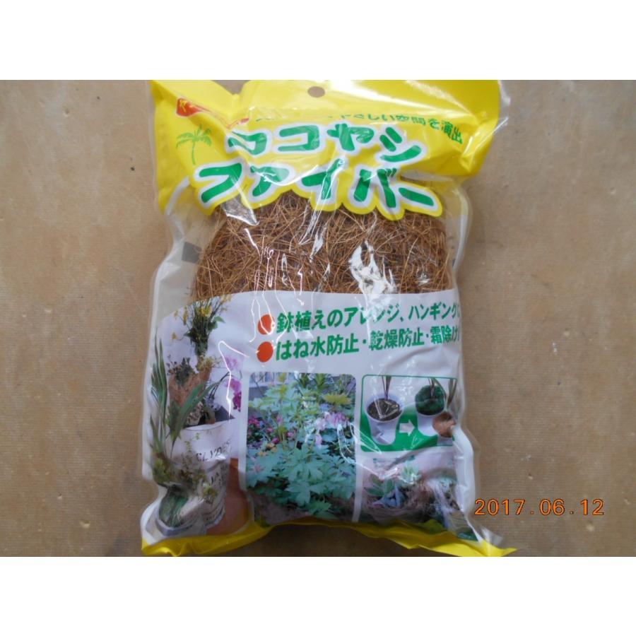 ココヤシファイバー はね水防止 在庫処分 寄せ植え 特価キャンペーン 乾燥防止 アレンジ