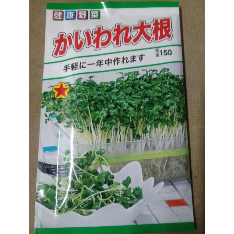 メーカー再生品 マーケティング 野菜の種 カイワレ大根 2袋まで送料73円 健康野菜