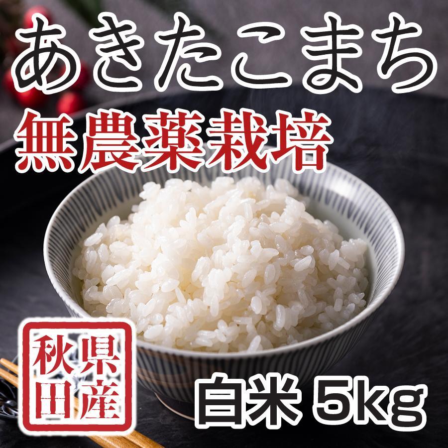 白米 令和3年産新米 秋田県産 あきたこまち 無農薬栽培米 5kg 農家直送 hanatsukafarm