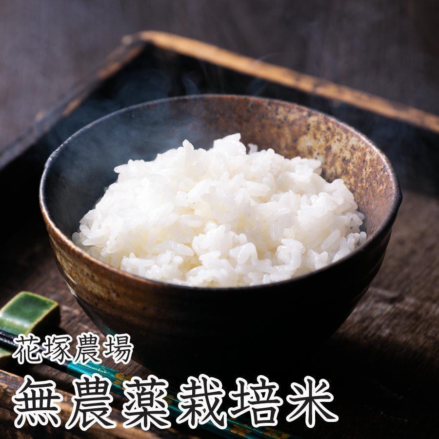 白米 令和3年産新米 秋田県産 あきたこまち 無農薬栽培米 5kg 農家直送 hanatsukafarm 02