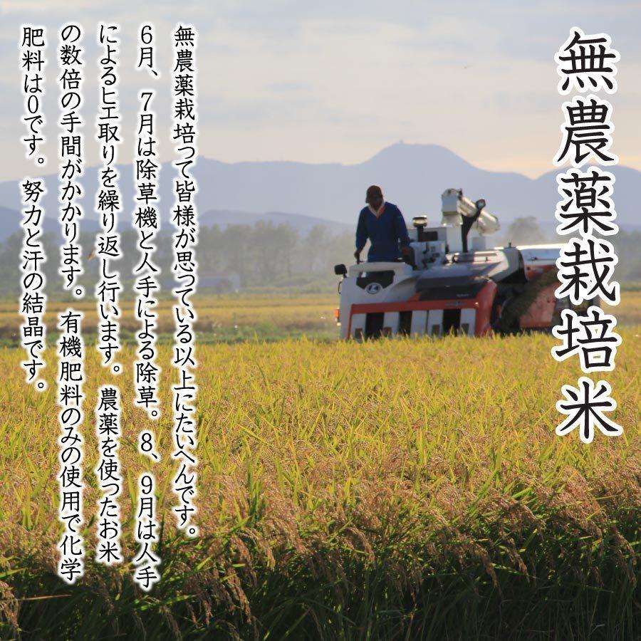 白米 令和3年産新米 秋田県産 あきたこまち 無農薬栽培米 5kg 農家直送 hanatsukafarm 03
