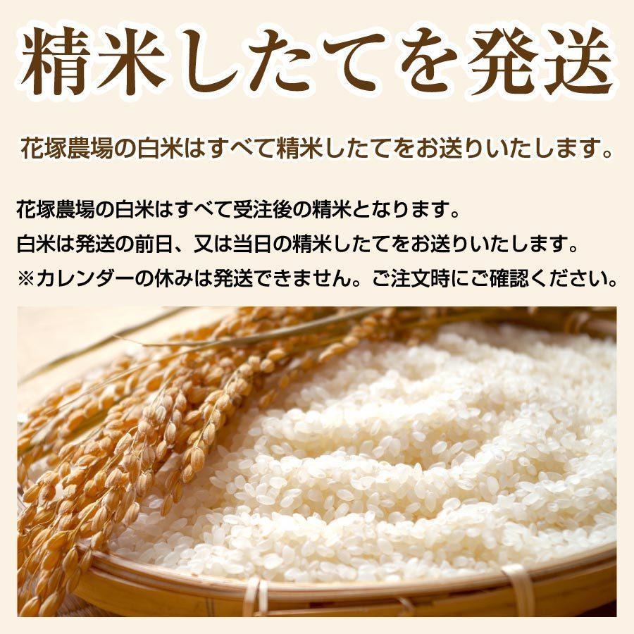 白米 令和3年産新米 秋田県産 あきたこまち 無農薬栽培米 5kg 農家直送 hanatsukafarm 04