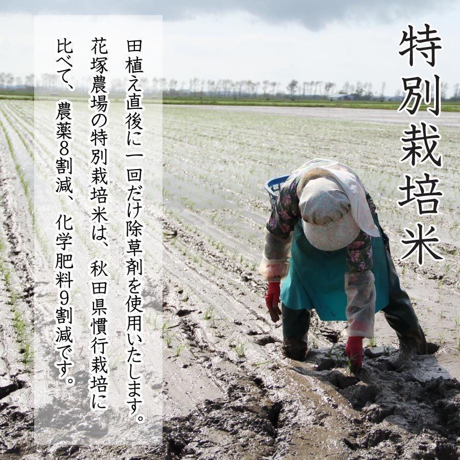 令和2年産米 秋田県産 あきたこまち 特別栽培 白米 5kg 農薬8割減 化学肥料9割減 慣行栽培比 農家直送|hanatsukafarm|03
