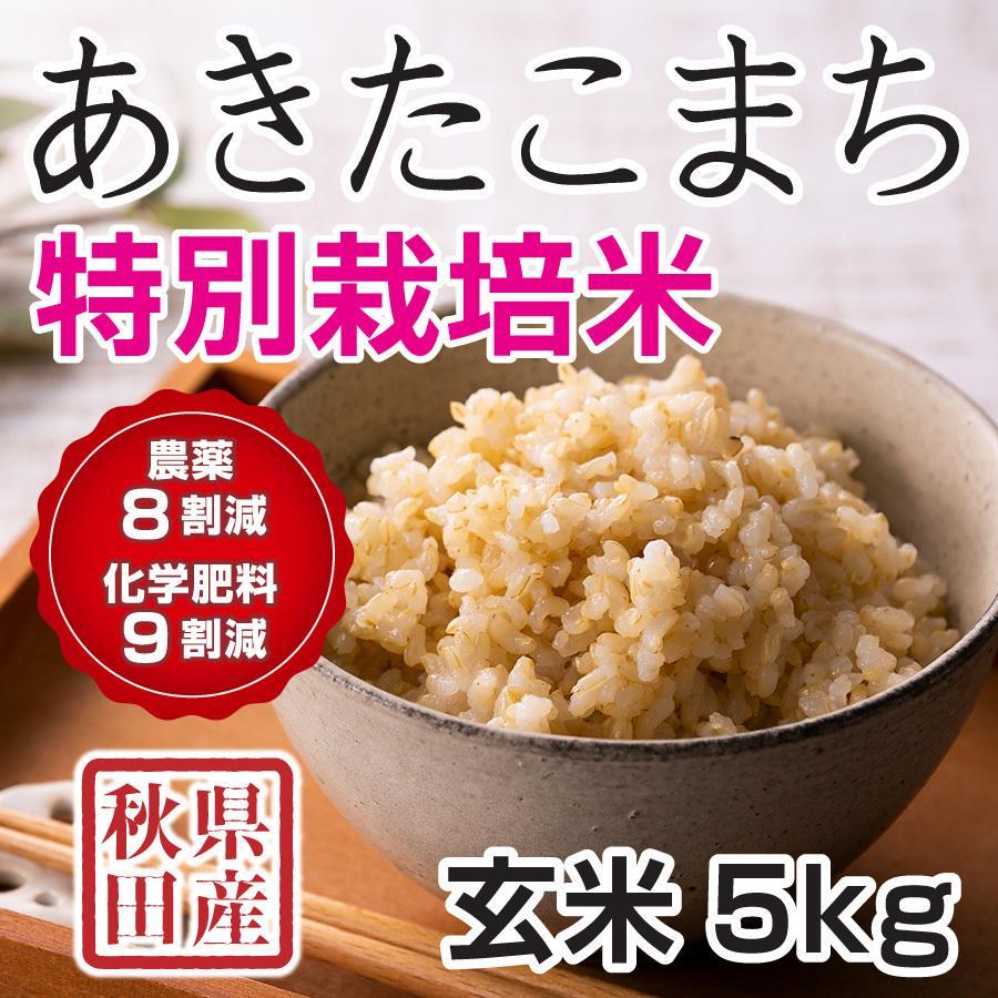 令和2年産米 秋田県産 あきたこまち 特別栽培 玄米 5kg 農薬8割減 化学肥料9割減 慣行栽培比 農家直送|hanatsukafarm