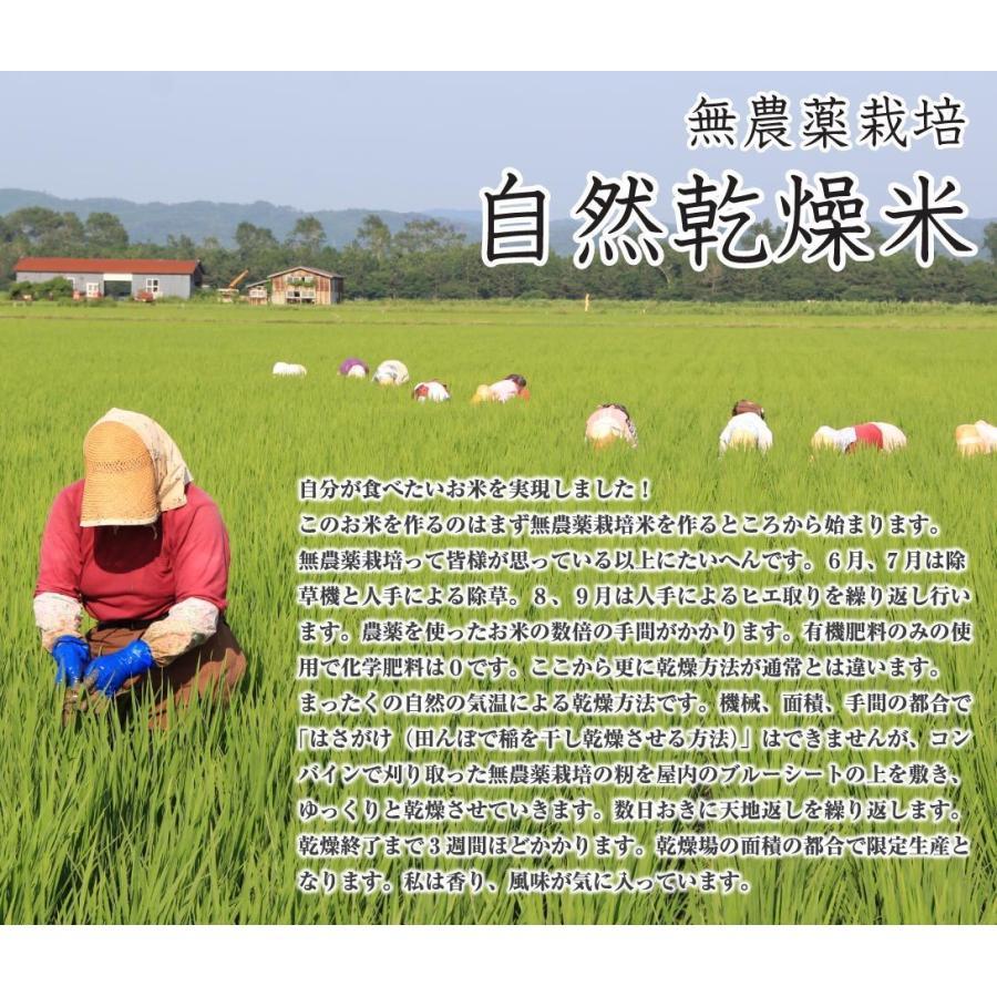 【新米予約】 玄米 令和3年産新米 秋田県産 あきたこまち 無農薬自然乾燥プレミアム 5kg 農家直送 hanatsukafarm 06