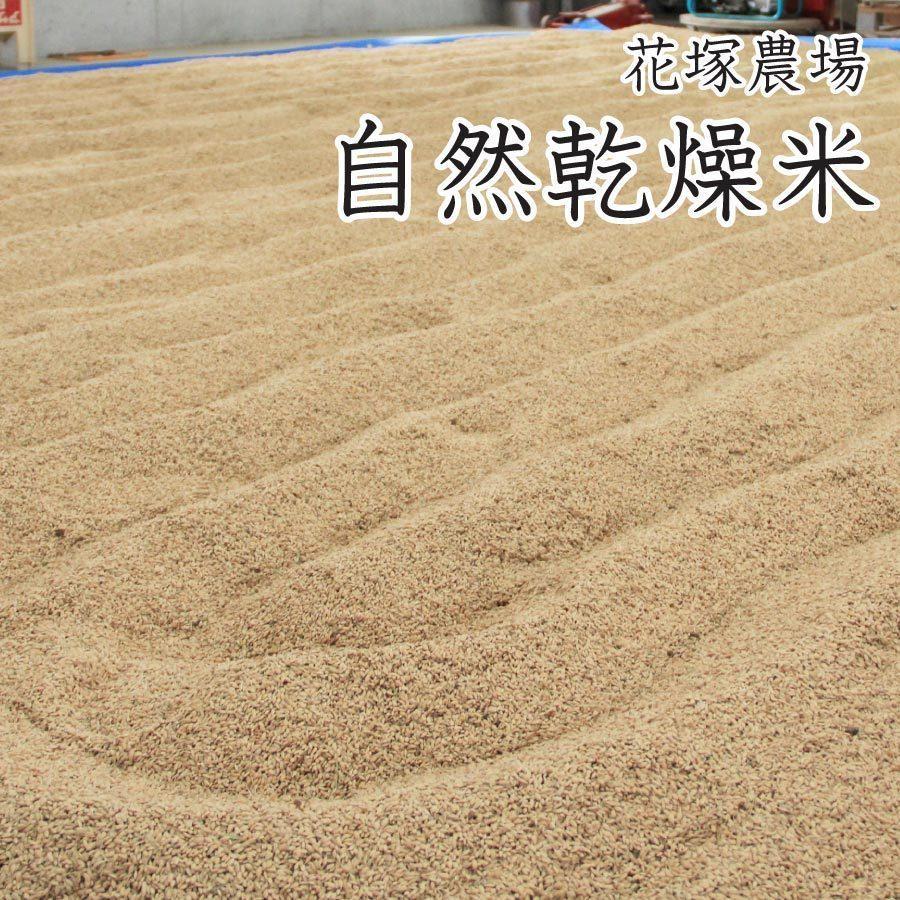 【新米予約】 玄米 令和3年産新米 秋田県産 あきたこまち 無農薬自然乾燥プレミアム 20kg 農家直送|hanatsukafarm|03